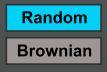 random_brow